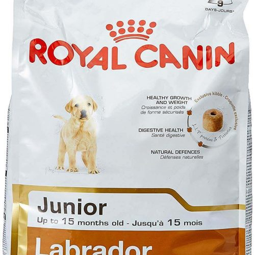 Royal Canin Labrador Junior, 3 kg 1